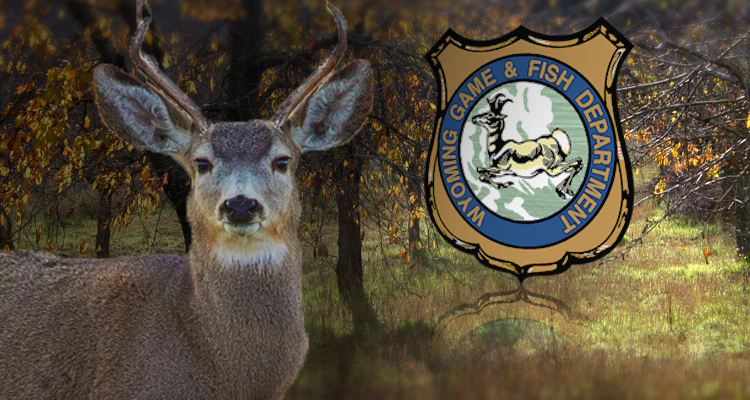 Plan your hunt with help from wy game and fish for Wy game and fish