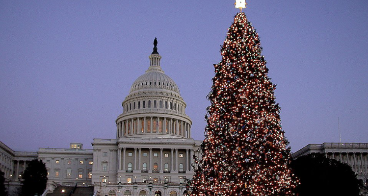 Capitol Christmas Tree.U S Capitol Christmas Tree To Make Stops In Idaho Wyoming